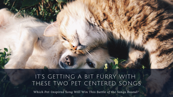 It's Getting a Bit Furry With These Two Pet Centered Songs