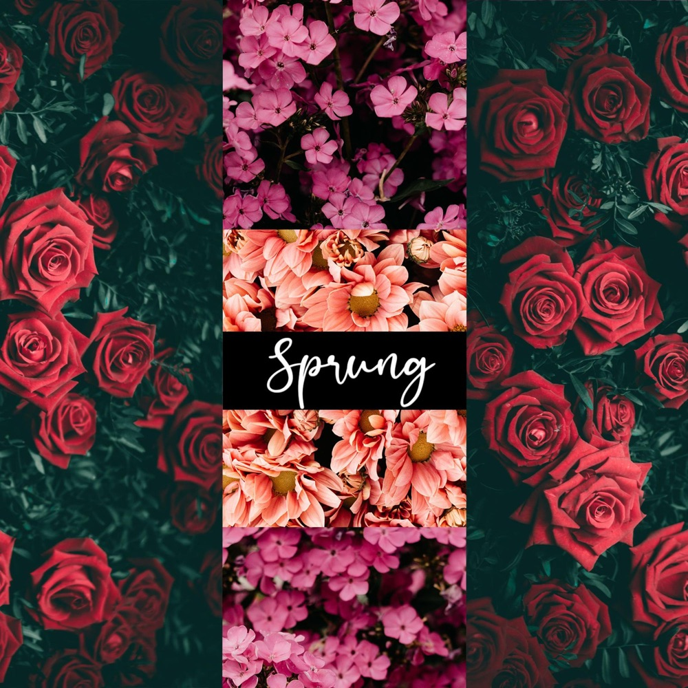 """Read more about the article The Daily Feature: Alan Starks' """"Sprung"""" Is a Gorgeous Acoustic Indie Pop Tune"""