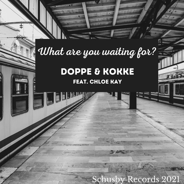 """Read more about the article The Daily Feature: Doppe & Kokke's """"What are you waiting for"""" Is a Charmful Tune Because of This"""