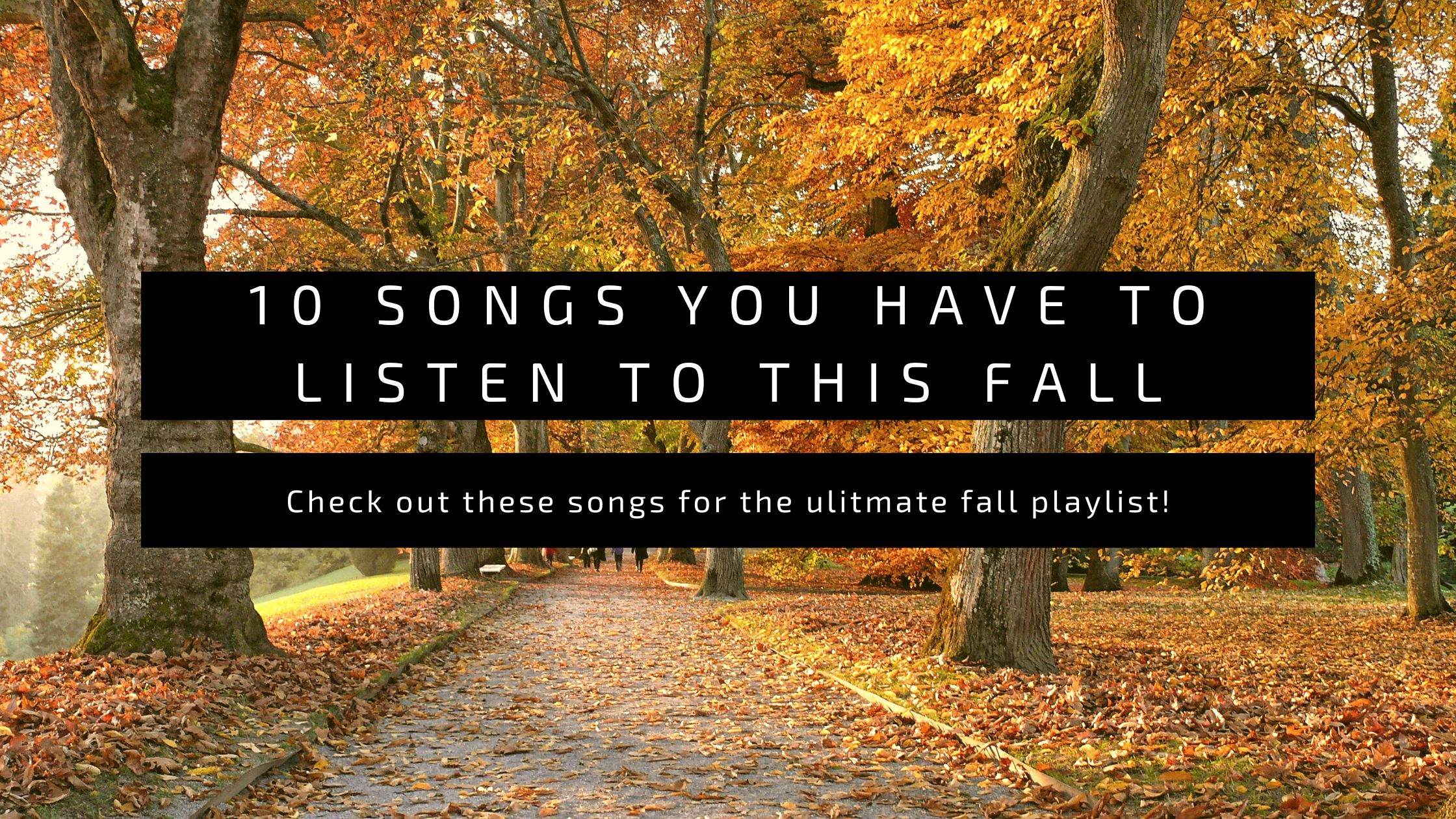 Read more about the article 10 Songs You Have To Listen To This Fall