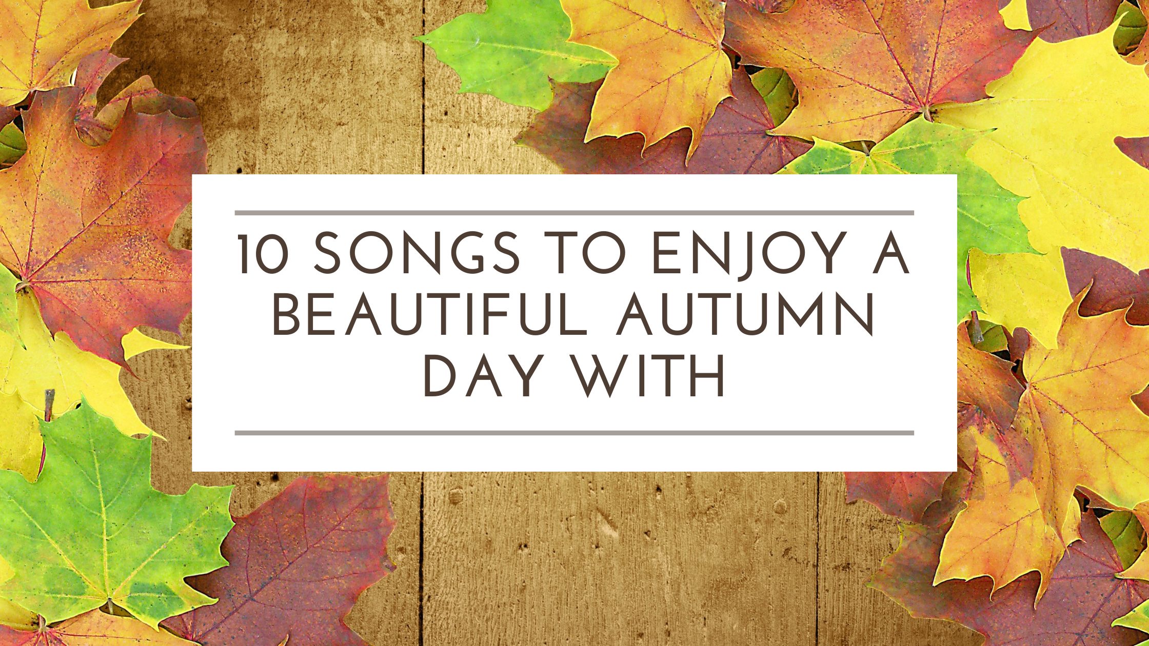 Read more about the article 10 Songs to Enjoy a Beautiful Autumn Day With