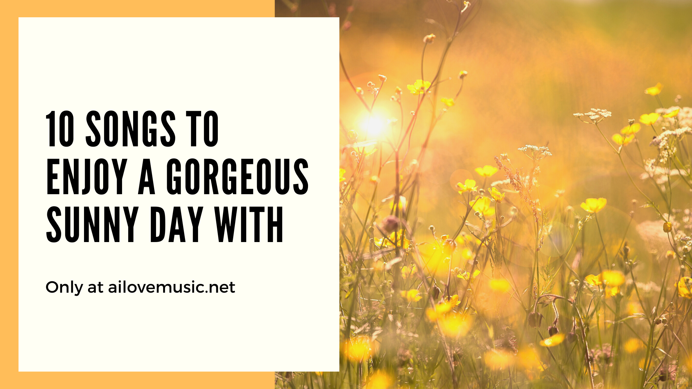 Read more about the article 10 Songs to Enjoy a Gorgeous Sunny Day With